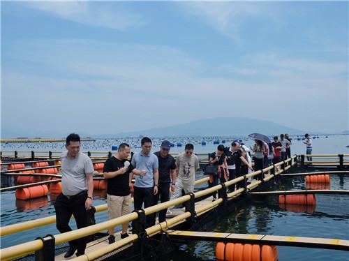 学员们考察大黄鱼养殖基地.jpg