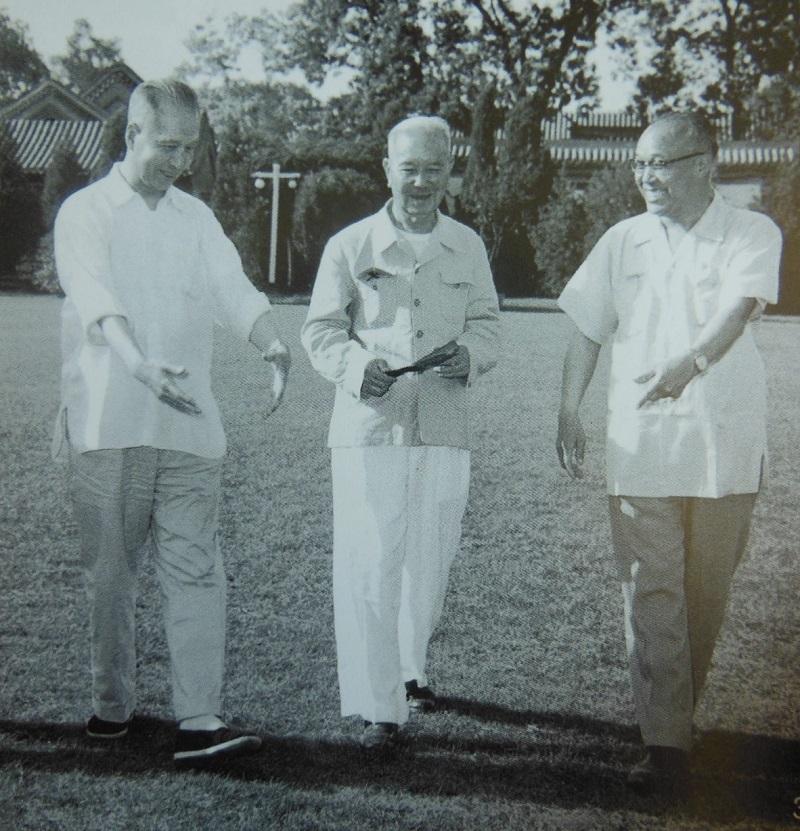 1956年,庄希泉(左)与陈嘉庚(中)及庄明理(右)在中南海漫步畅谈.jpg