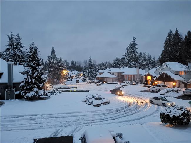 momo-大年初一、初二,西雅图家门口雪景.jpg